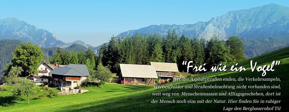 Touristischer Bauernhof Pr TIČ - Unser Bergbauernhof hat eine Alleinlage auf einer Höhe von 1050 Metern, mit einem herrlichen Blick auf das Tal und die umliegenden Berge. In der Mitte der Natur, auf dem Gelände des Bergwege stehen zur Verfügung zwei Wohnungen, Bio-Lebensmittel und eine Reihe von Optionen für die Freizeit