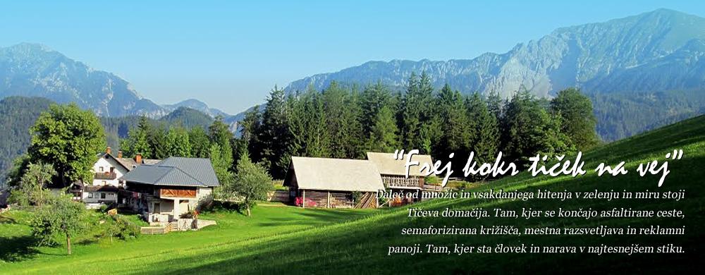 Turistična kmetija Pr TIČ - Naša visokogorska kmetija ima samotno lego na nadmorski višini 1050 m, s čudovitim razgledom na dolino in bližnje gore. Sredi narave, na izhodišču planinskih poti sta vam na voljo dva apartmaja, ekološko pridelana hrana in vrsta možnosti za preživljanje prostega časa