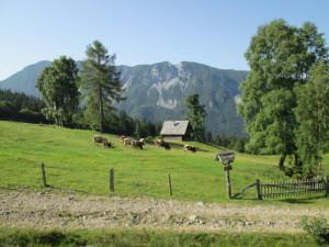 Tičova_planina